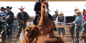 Rodeo team racks up wins