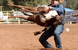NMSU Spring Rodeo this weekend