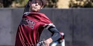 NMSU Baseball opens up WAC play with two series victories
