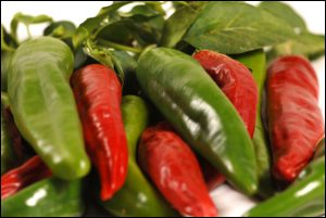 Hatch chile festival may come to an end